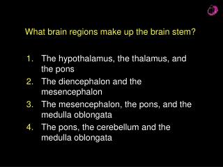 What brain regions make up the brain stem?