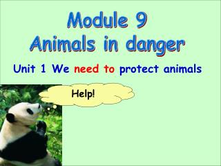 Module 9 Animals in danger