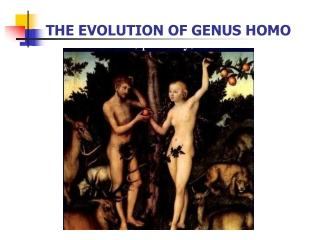 THE EVOLUTION OF GENUS HOMO
