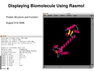 Displaying Biomolecule Using Rasmol