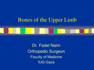 Bones of the Upper Limb