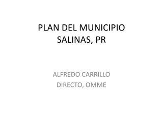 PLAN DEL MUNICIPIO SALINAS, PR