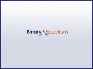 Binary Spectrum - Healthcare Software Solutions