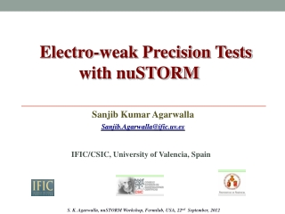 Electro-weak Precision Tests              with nuSTORM