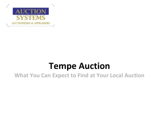 Tempe Auction: What You Can Expect to Find at Your Local Auc