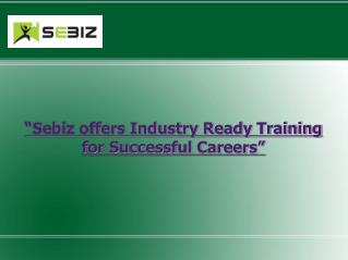 Sebiz Infotech Training