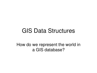 GIS Data Structures