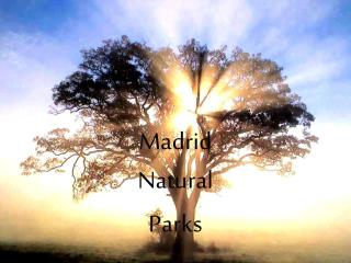 Madrid  Natural Parks