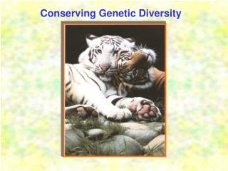 Conserving Genetic Diversity