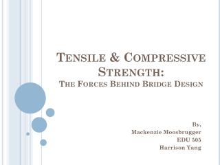 Tensile & Compressive Strength: The Forces Behind Bridge Design