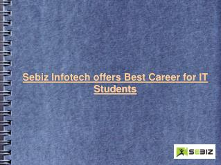 Sebiz Infotech Career