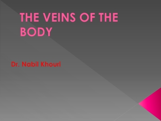 THE VEINS OF THE BODY