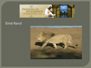 Erindi  Ranch