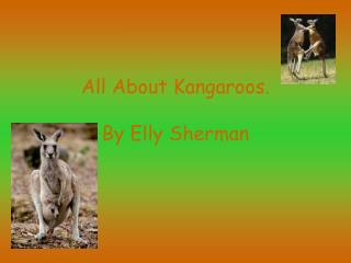 All About Kangaroos.   By Elly Sherman