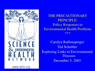 THE PRECAUTIONARY PRINCIPLE:  Policy Responses to  Environmental Health Problems ***