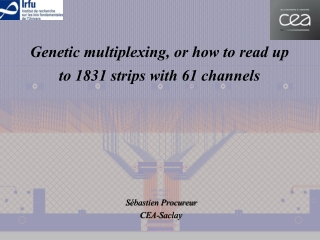 Genetic multiplexing, or how to read up to 1831 strips with 61 channels