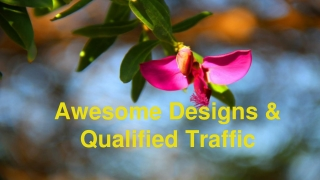 Awesome Designs & Qualified Traffic