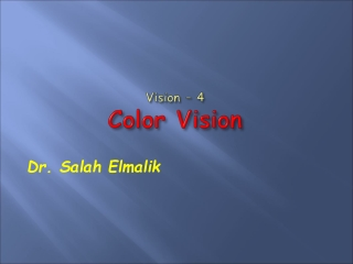 Vision – 4 Color Vision