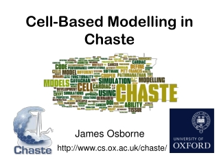 Cell-Based Modelling in Chaste
