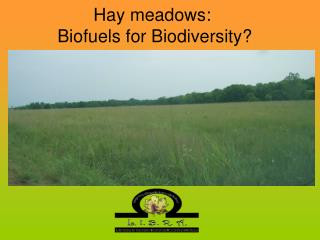 Hay meadows:  Biofuels for Biodiversity?