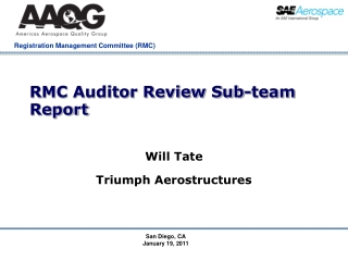 RMC Auditor Review Sub-team Report