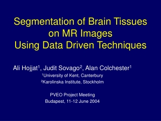 Segmentation of Brain Tissues on MR Images Using Data Driven Techniques