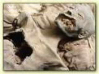 Queen Nefertiti's mummy