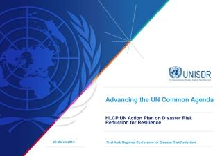 Advancing the UN Common Agenda