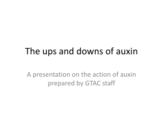 The ups and downs of auxin