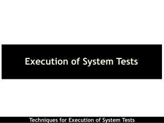 Execution of System Tests