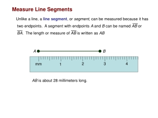 Measure Line Segments