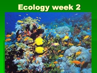 Ecology week 2