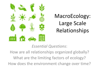 MacroEcology:   Large Scale Relationships