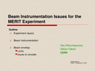 Beam Instrumentation Issues for the MERIT Experiment