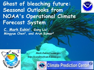 Ghost of bleaching future: Seasonal Outlooks from NOAA's Operational Climate Forecast System