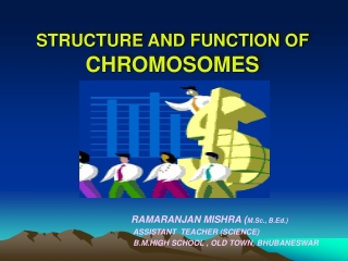 STRUCTURE AND FUNCTION OF CHROMOSOMES