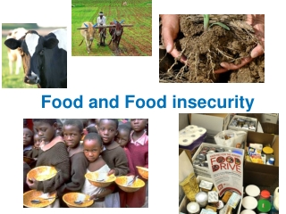 Food and Food insecurity