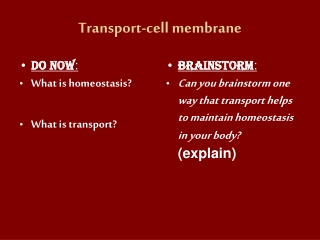 Transport-cell membrane
