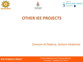 OTHER IEE PROJECTS