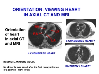 ORIENTATION: VIEWING HEART IN AXIAL CT AND MRI