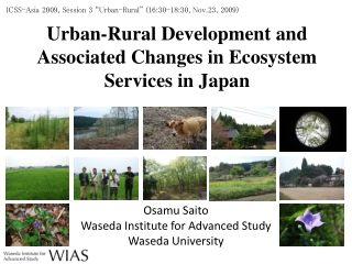 Urban-Rural Development and Associated Changes in Ecosystem Services in Japan