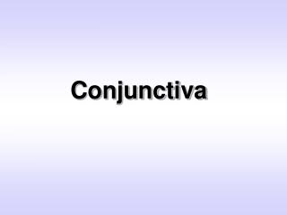 Conjunctiva