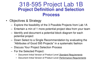 Project Definition and Selection Process