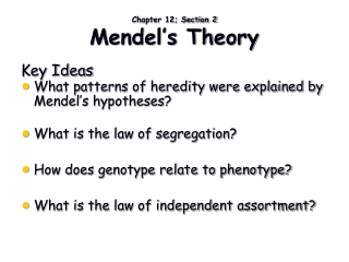 Chapter 12; Section 2 Mendel's Theory