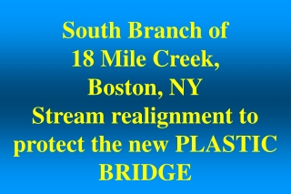 South Branch of  18 Mile Creek,  Boston, NY Stream realignment to protect the new PLASTIC BRIDGE