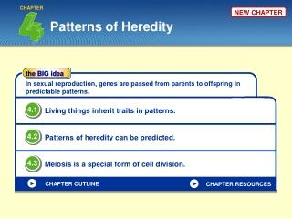 Patterns of Heredity