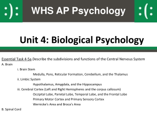 Unit 4: Biological Psychology