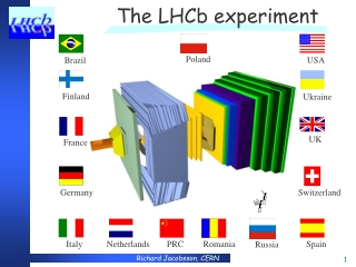 The LHCb experiment