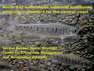 North Bay watersheds  salmonid  monitoring program: a standard for the central coast