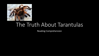 The Truth About Tarantulas
